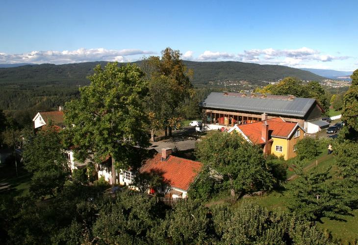 Steinerskole og Almbarnehage